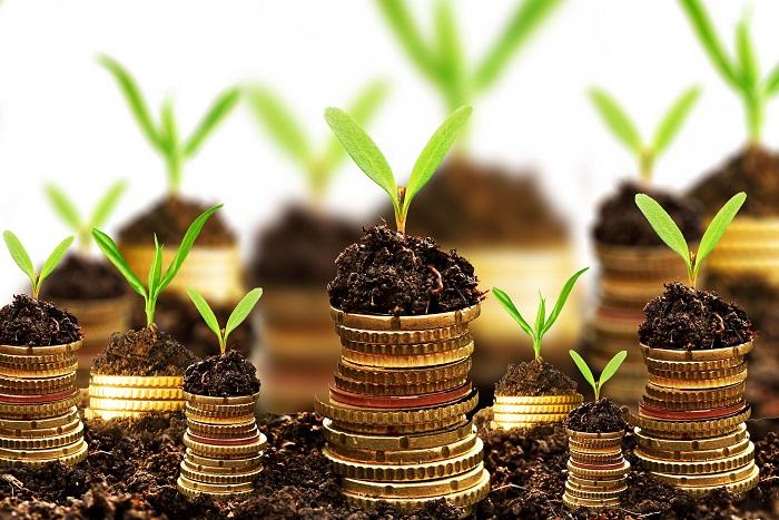 Dünyanın En Zengin İnsanlarının Yatırım Araçları , Nereye  Yatırım Yapıyorlar?