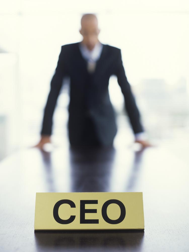 CEO (Genel Müdür) Nedir ? 2