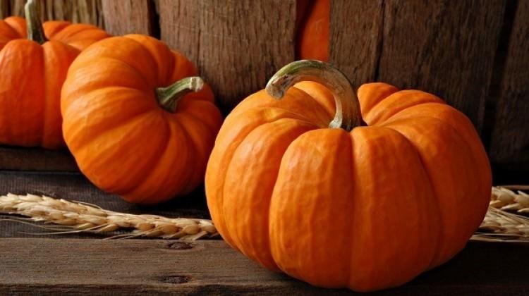 Kasım ayında tüketilmesi gereken besinler 12