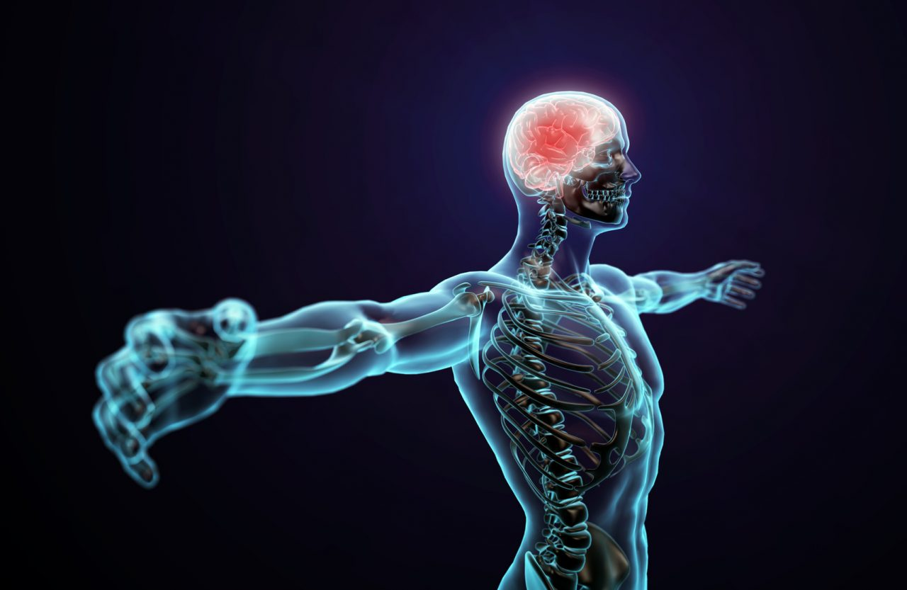 egzersizlerin-beyne-etkisi