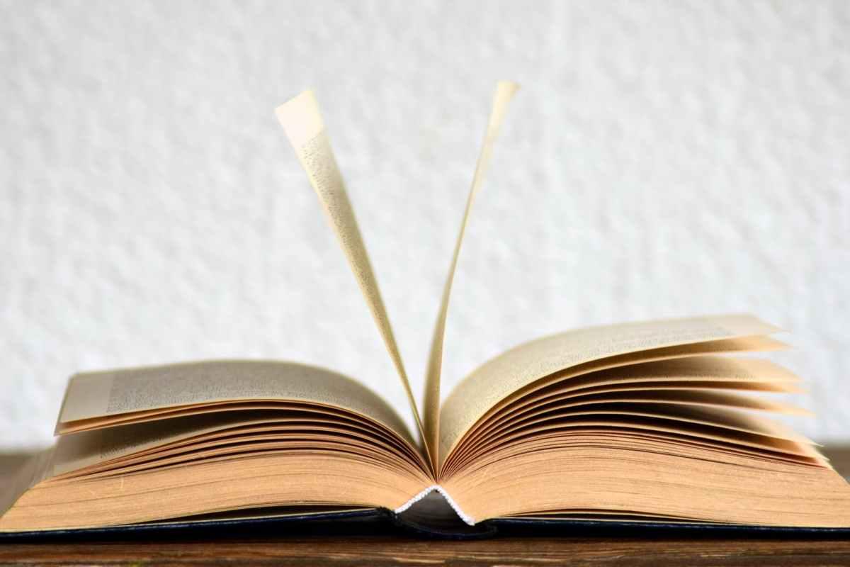 Osmanlıca Cevr ne demek ?Sözlük anlamı nedir 1