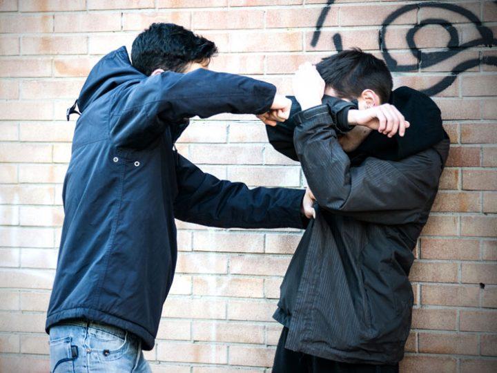 Agresif kelimesinin Türkçe karşılığı nedir 2
