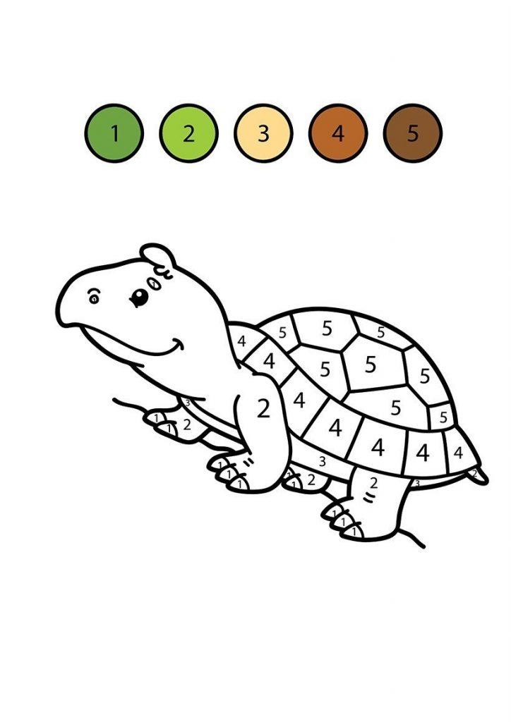 Kaplumbağa boyama resmi